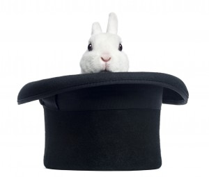 Rabbit in Top Hat